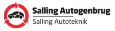 Salling auto logo